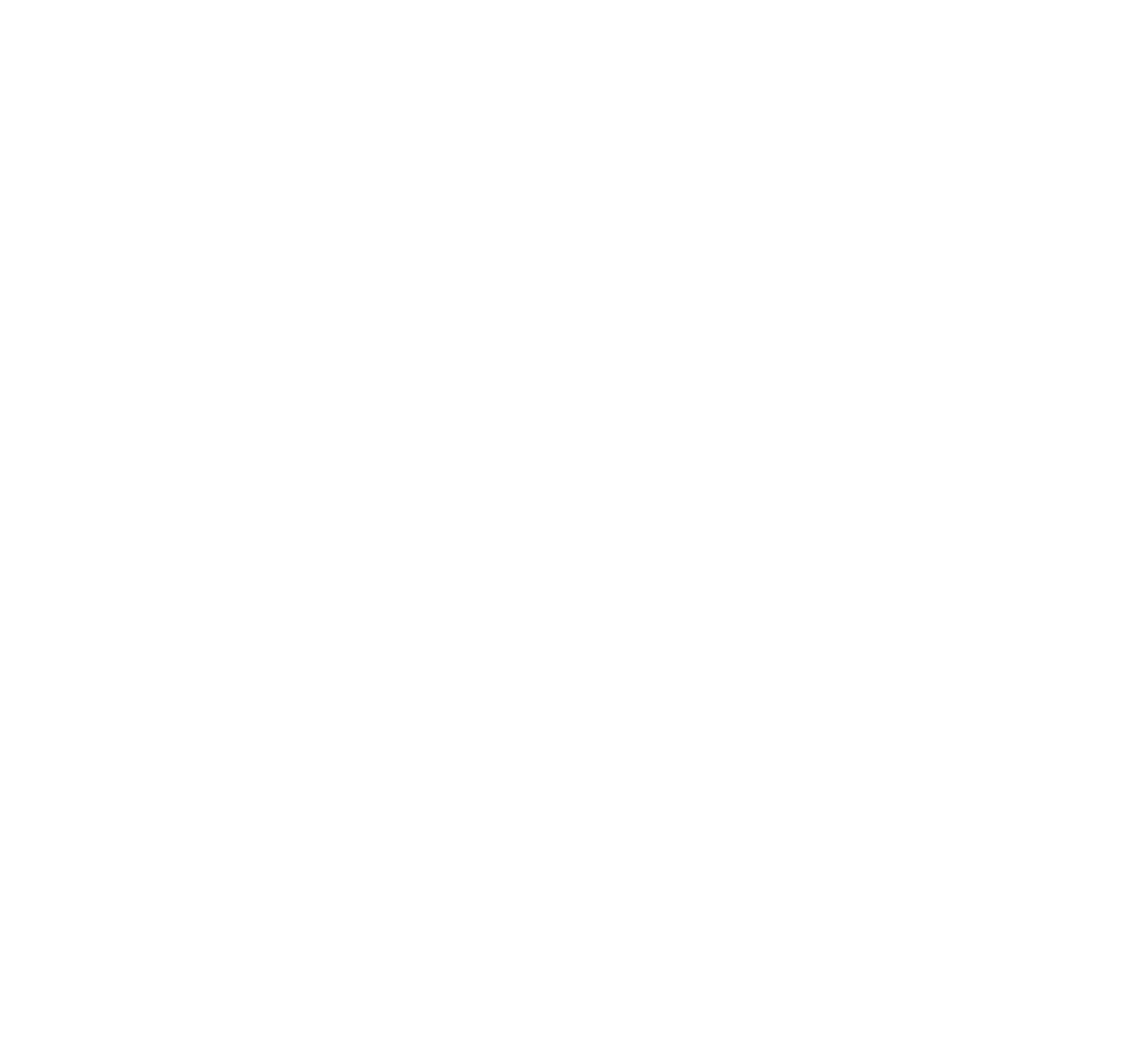 Fort Distillery logotype (knockout).png