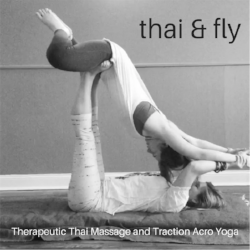 Thai & fly.png