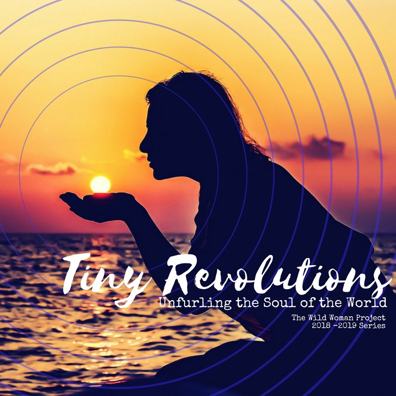 Tiny Revolutions is the 2019 Wild Woman Project theme.