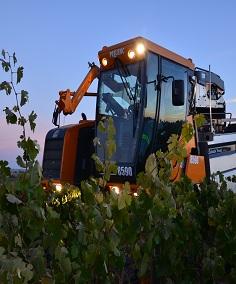 Grape Tractor.jpg