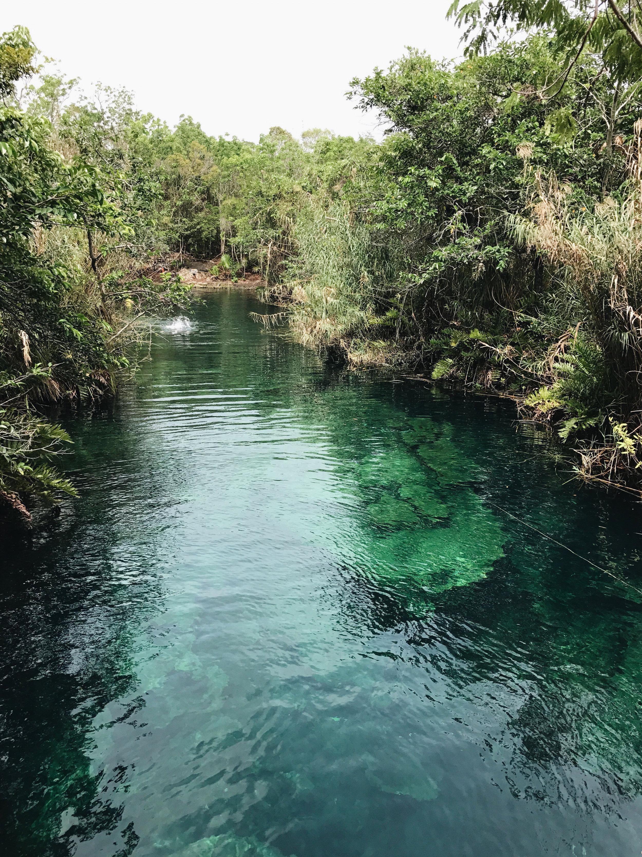 Cenote Cristal and Escondido,  Tulum, Mexico