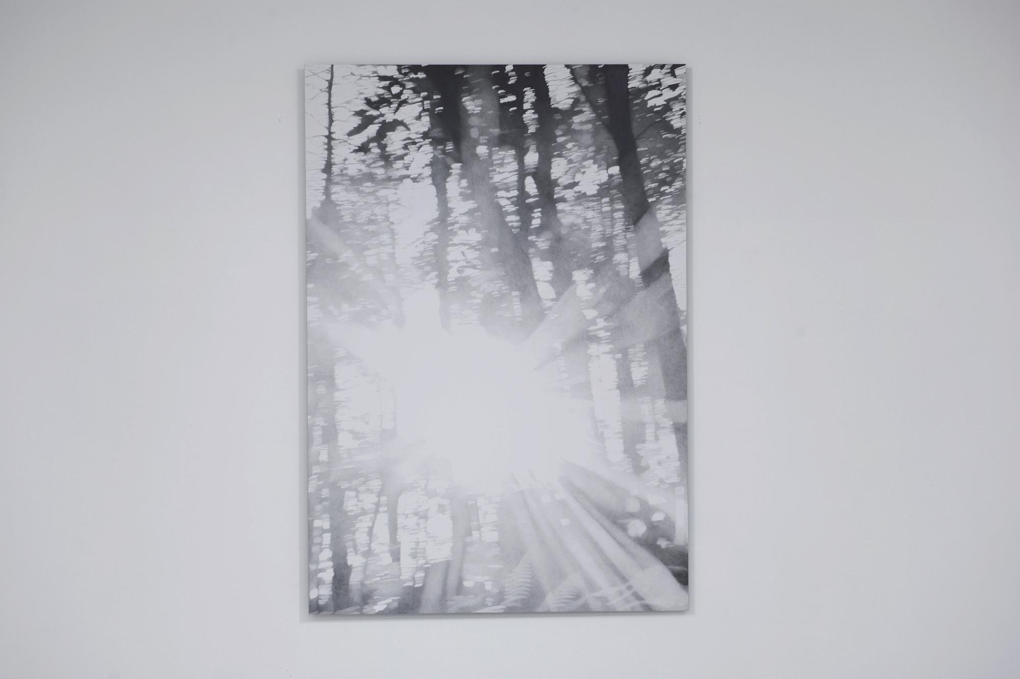 Soloppgang ved Fontainebleau , 2016 Blyant på papir montert på aluminium, 140 cm x 100 cm