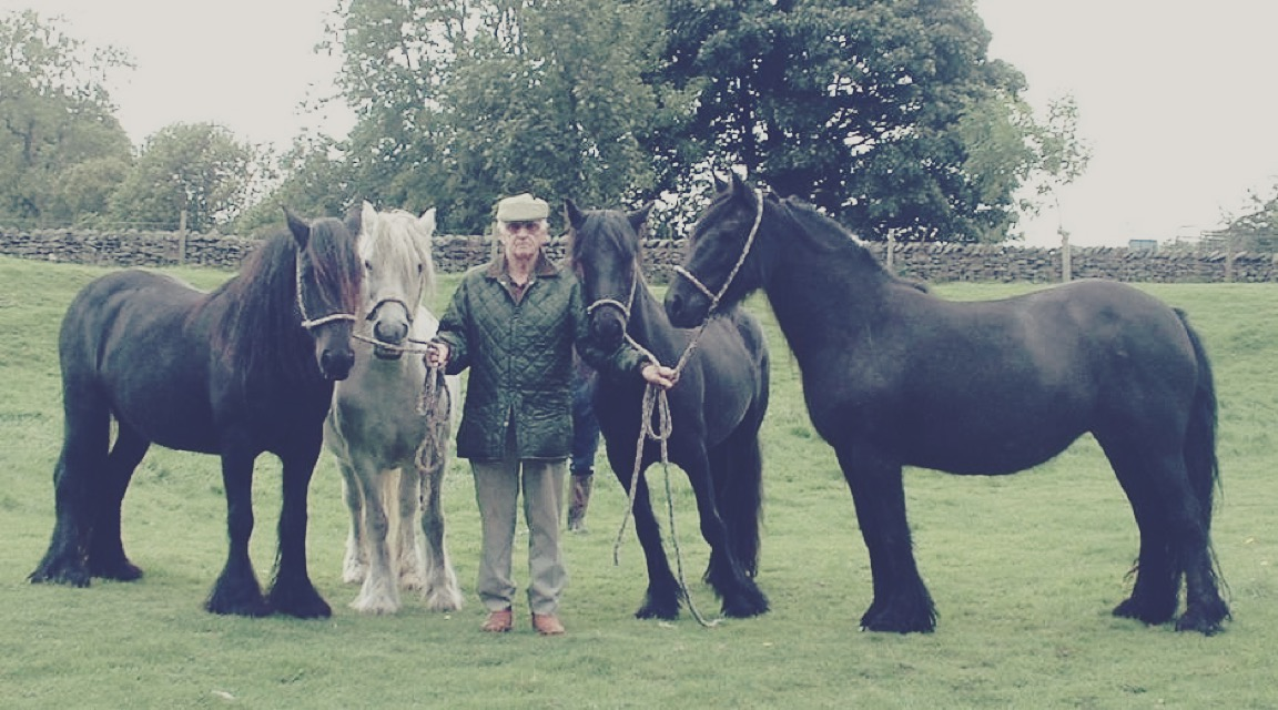 Bert Morland with 4 generations of Lunesdale mares