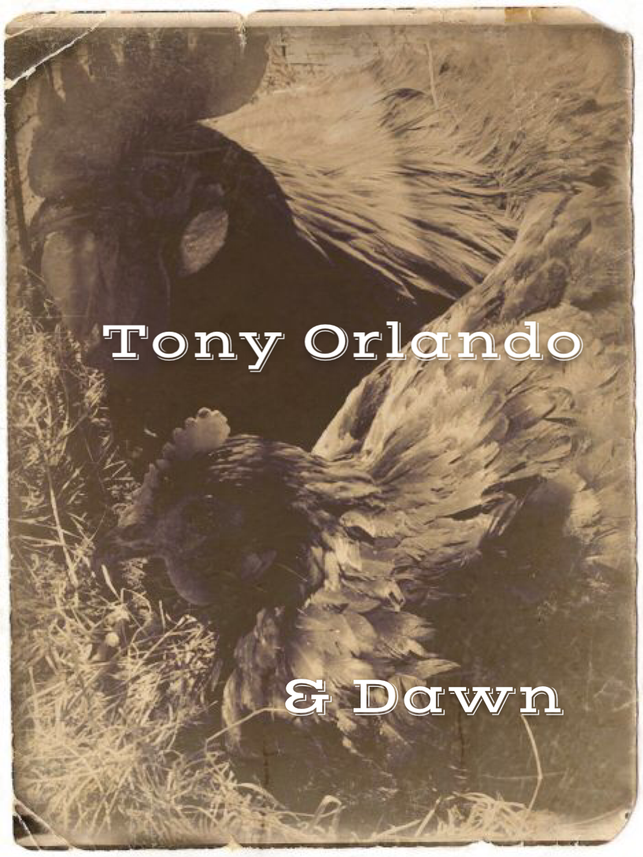 TONY ORLANDO & DAWN - Rescued from surviving somehow on a median of the Cross Bronx Expressway, through a very terrible winter without any shelter, no less.