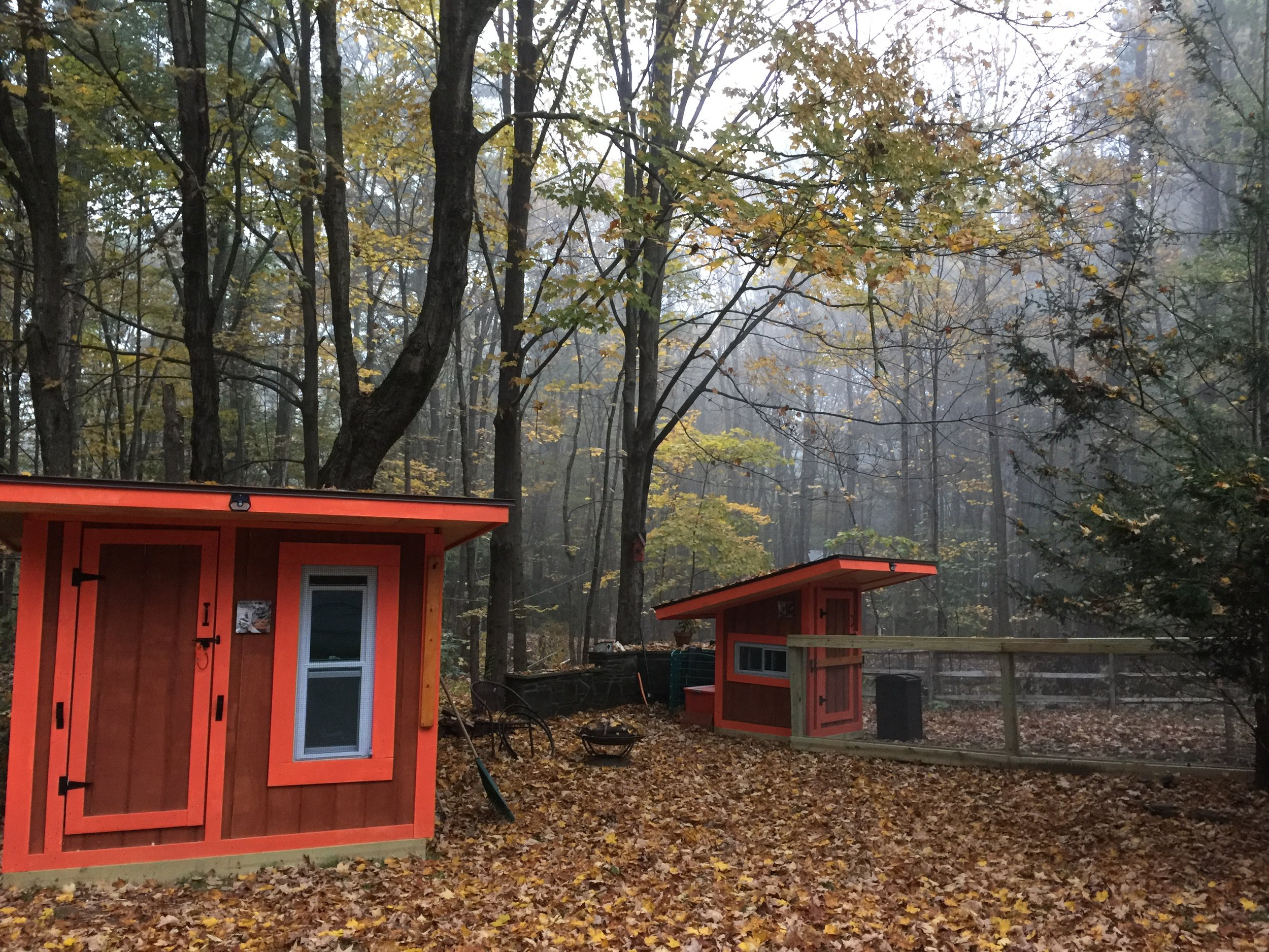 Coops 2 and 3 in the mist on a beautiful Fall Evening…..the attached runs still need to be built.