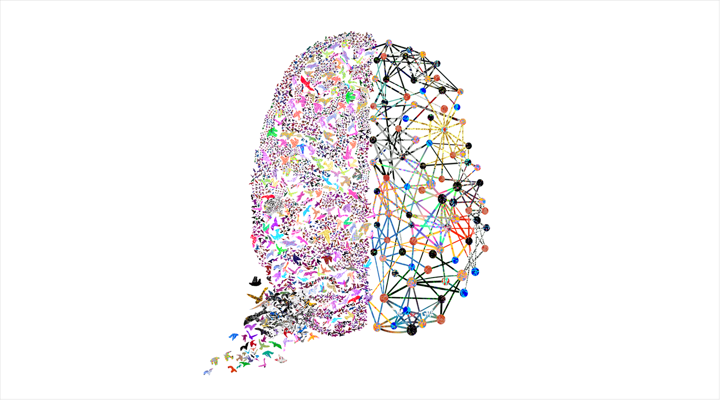 bbbrain (1).png