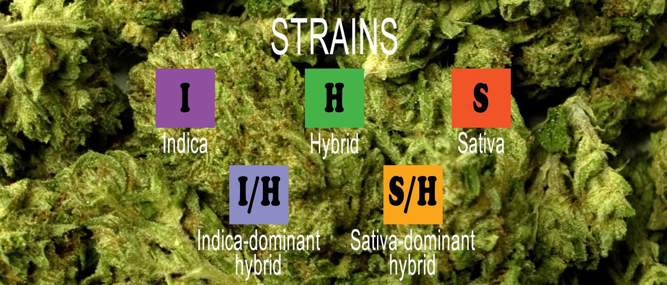 strains.jpg