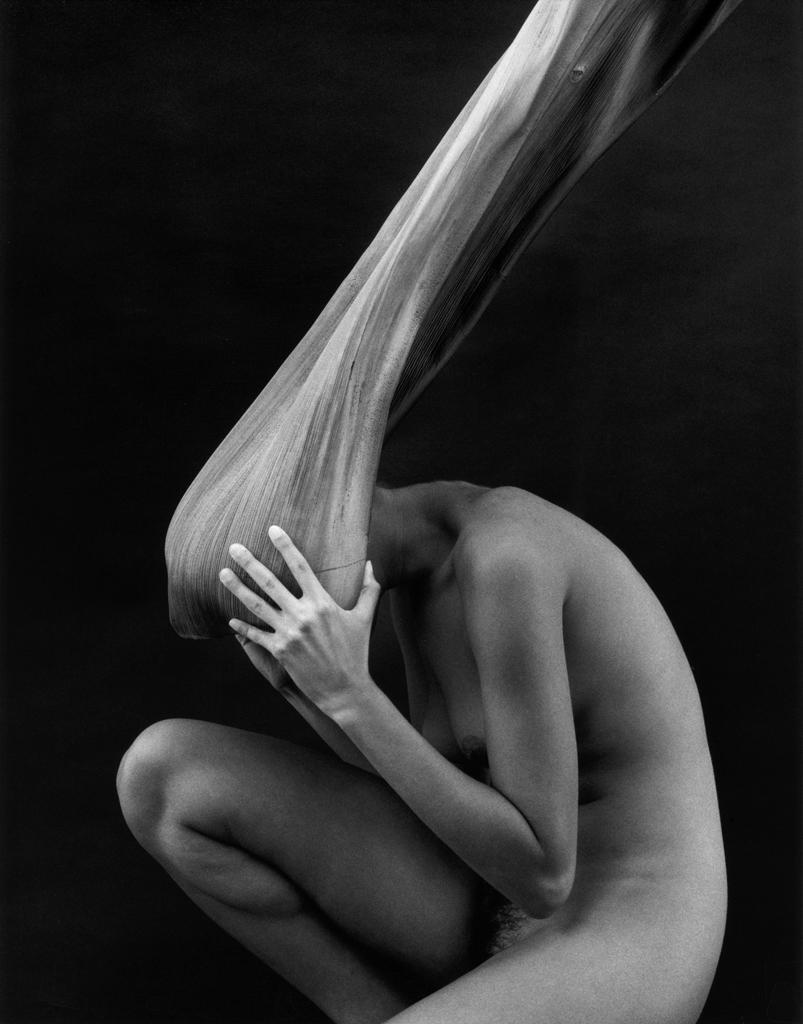 Nude and Palm | ©Kim Weston Photography