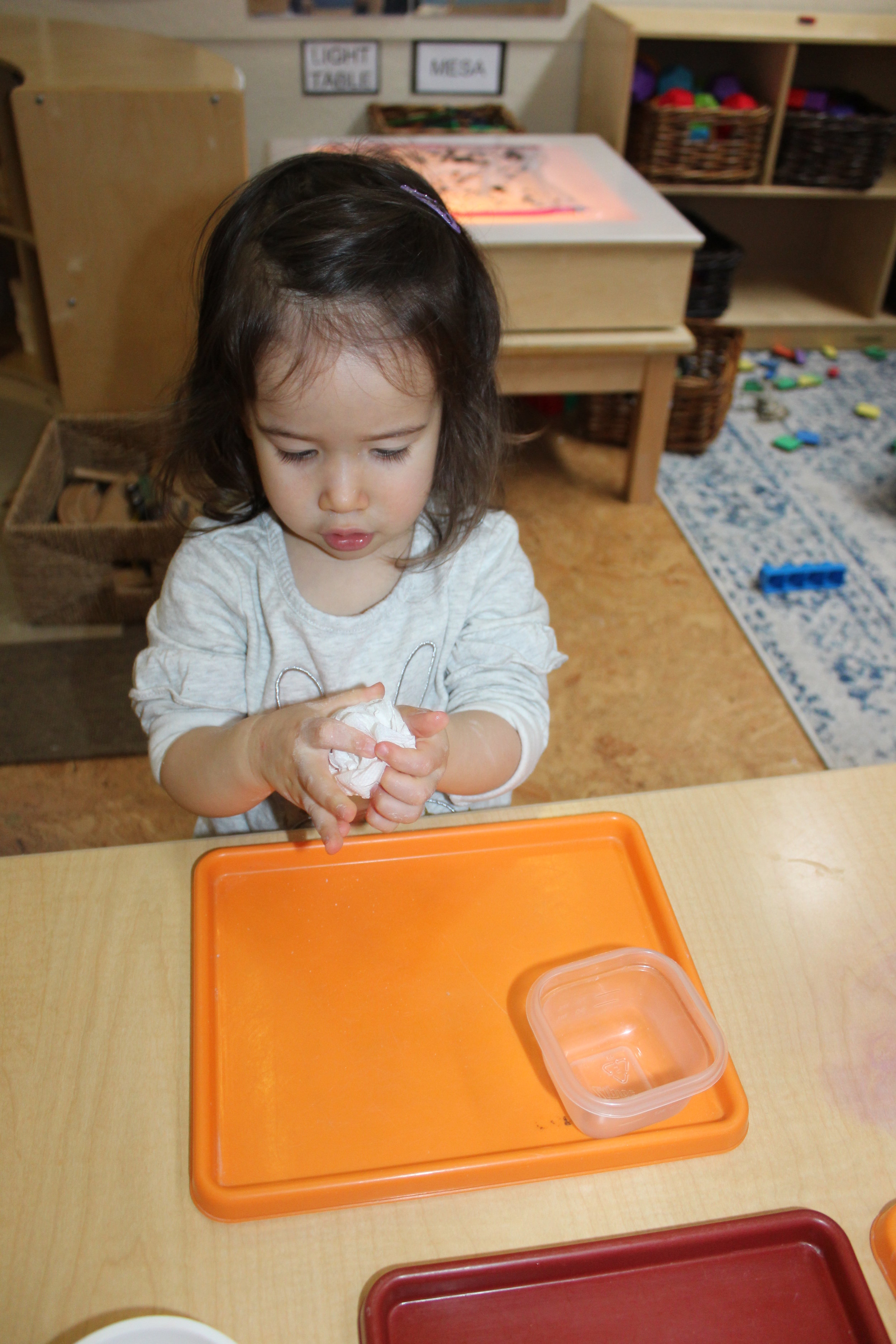 Crumple Paper Project is a three-step project. The children crumple the paper first, use watercolors of their choice, and wait until it gets dry to open the paper. All the children will have the opportunity to do this project. Their artwork will be displayed on the classroom wall.