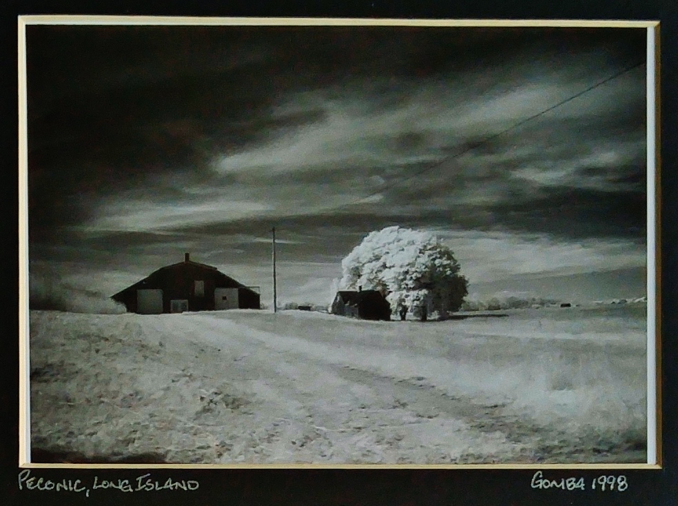 I won my first photography award in 1998 with this image I took out in the wine country on Long Island, NY.
