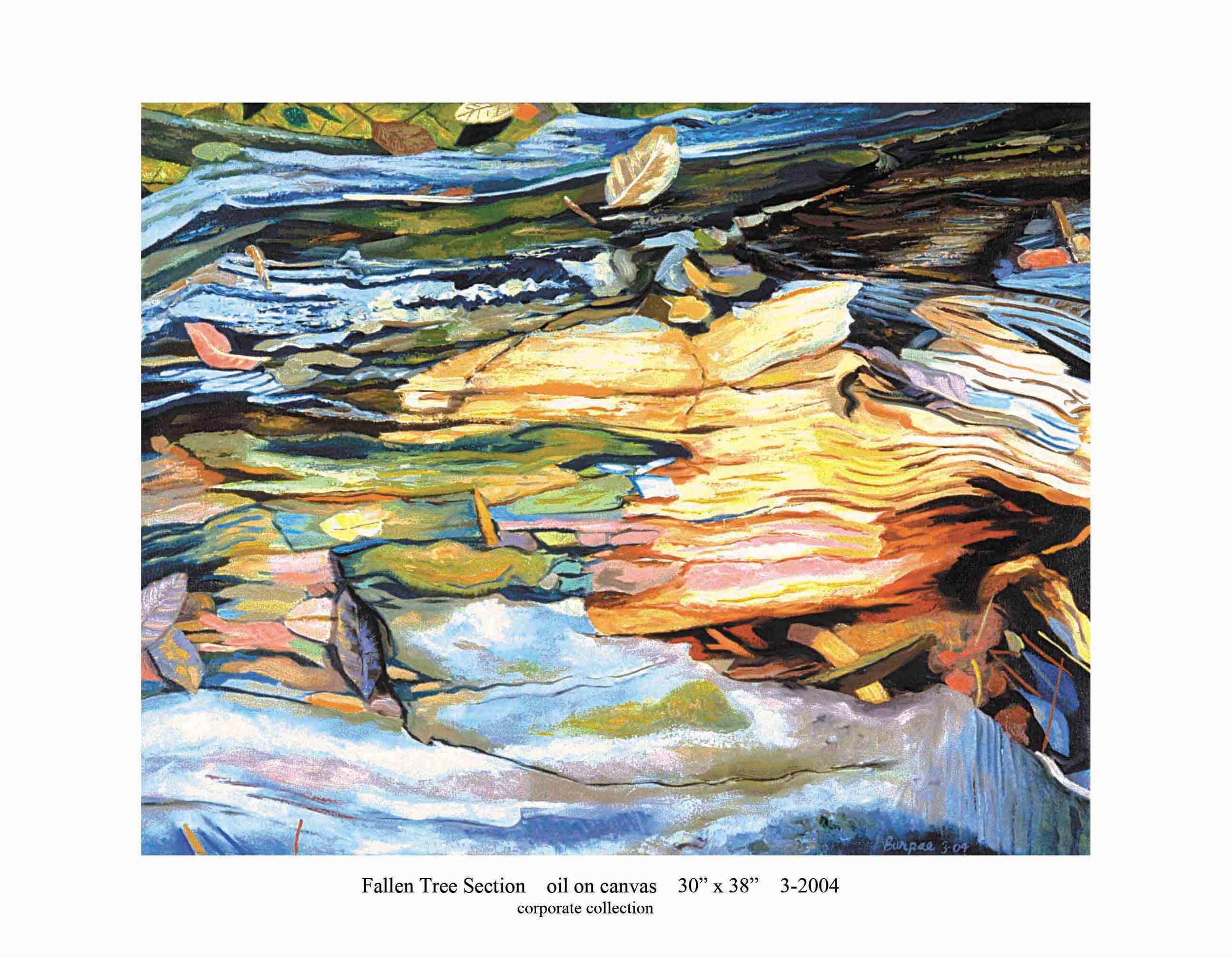 4) 3-2004 Fallen Tree Section 30 x 38.jpg
