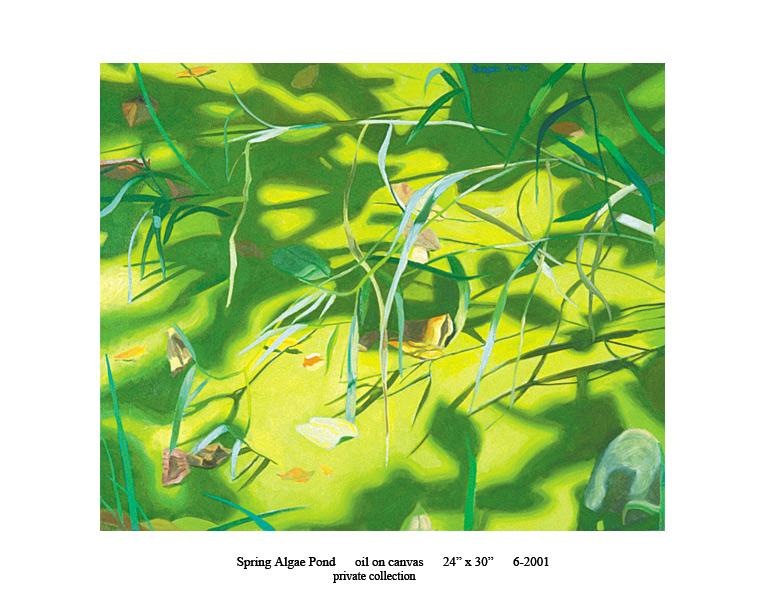 8)-6-2001-Spring-Algae-Pond-24-x-30.jpg