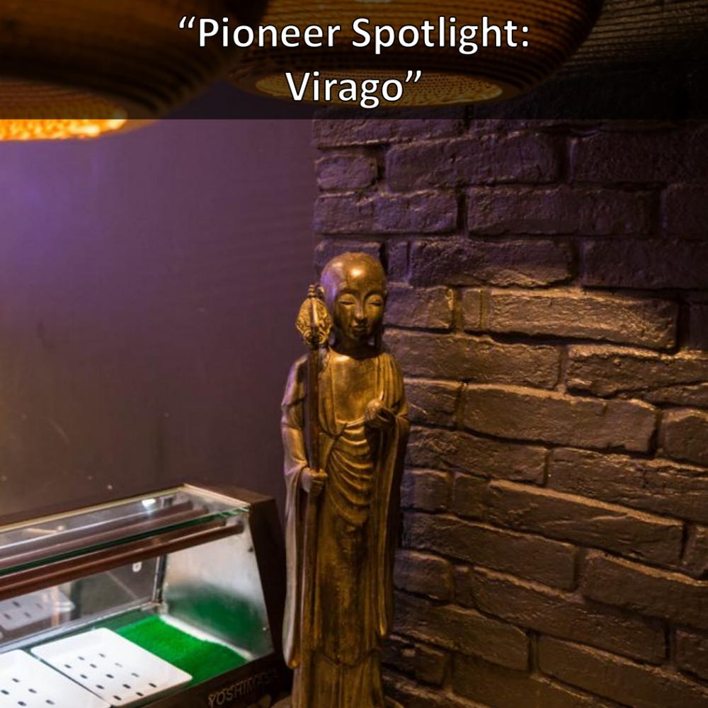 Pioneer Spotlight Virago