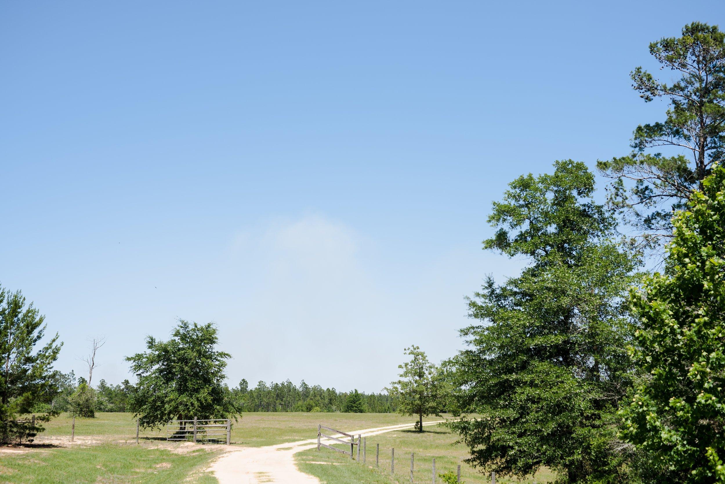 southern-lea-farms-florida-photographer-kiersten-grant-1.jpg