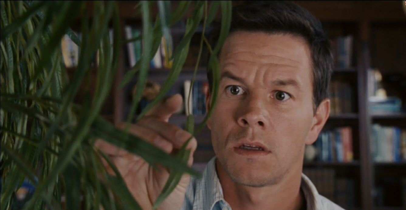 Mark Wahlberg has a legit monologue directed at a plastic plant. It's easily the best part of the movie.