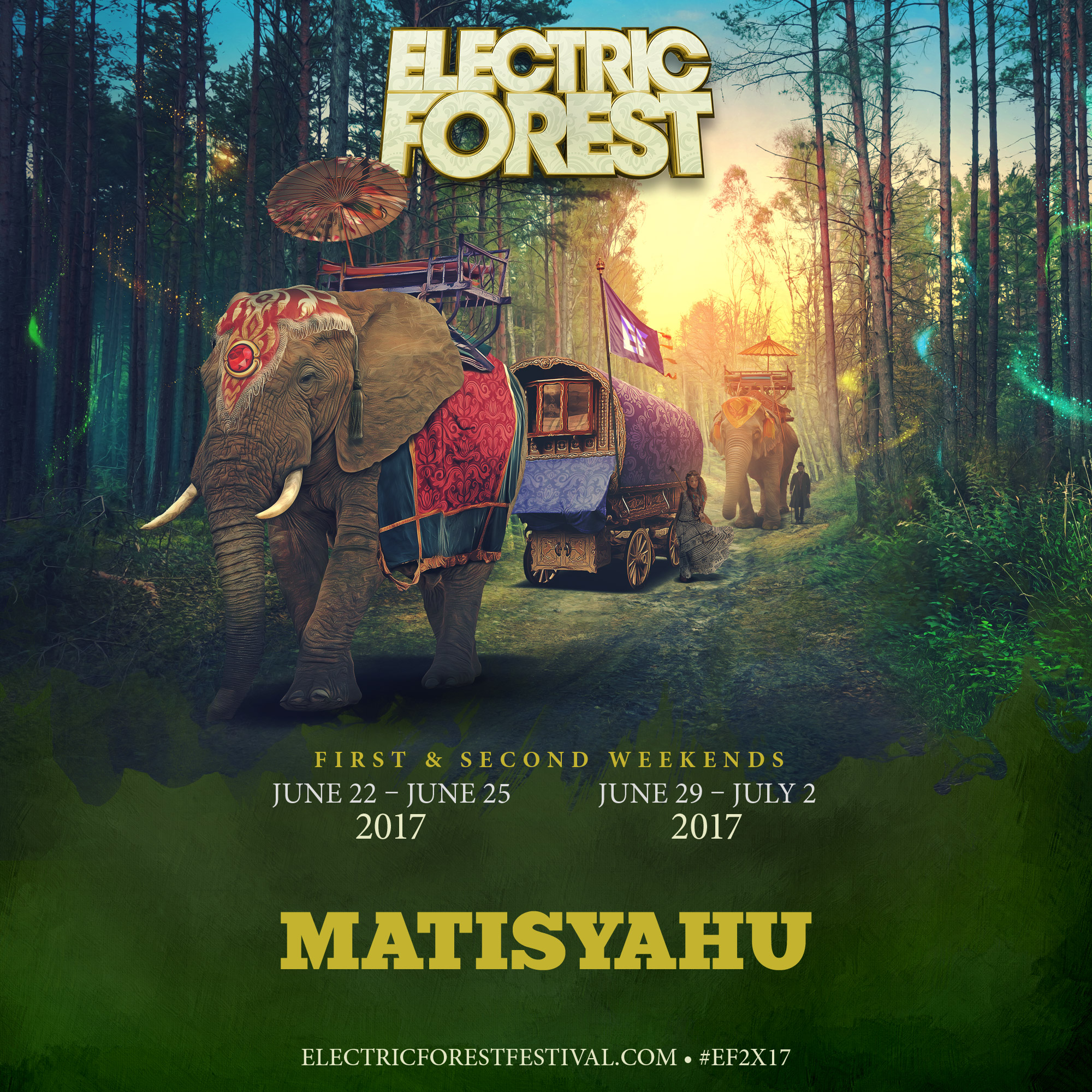 electric forest 2017.JPG