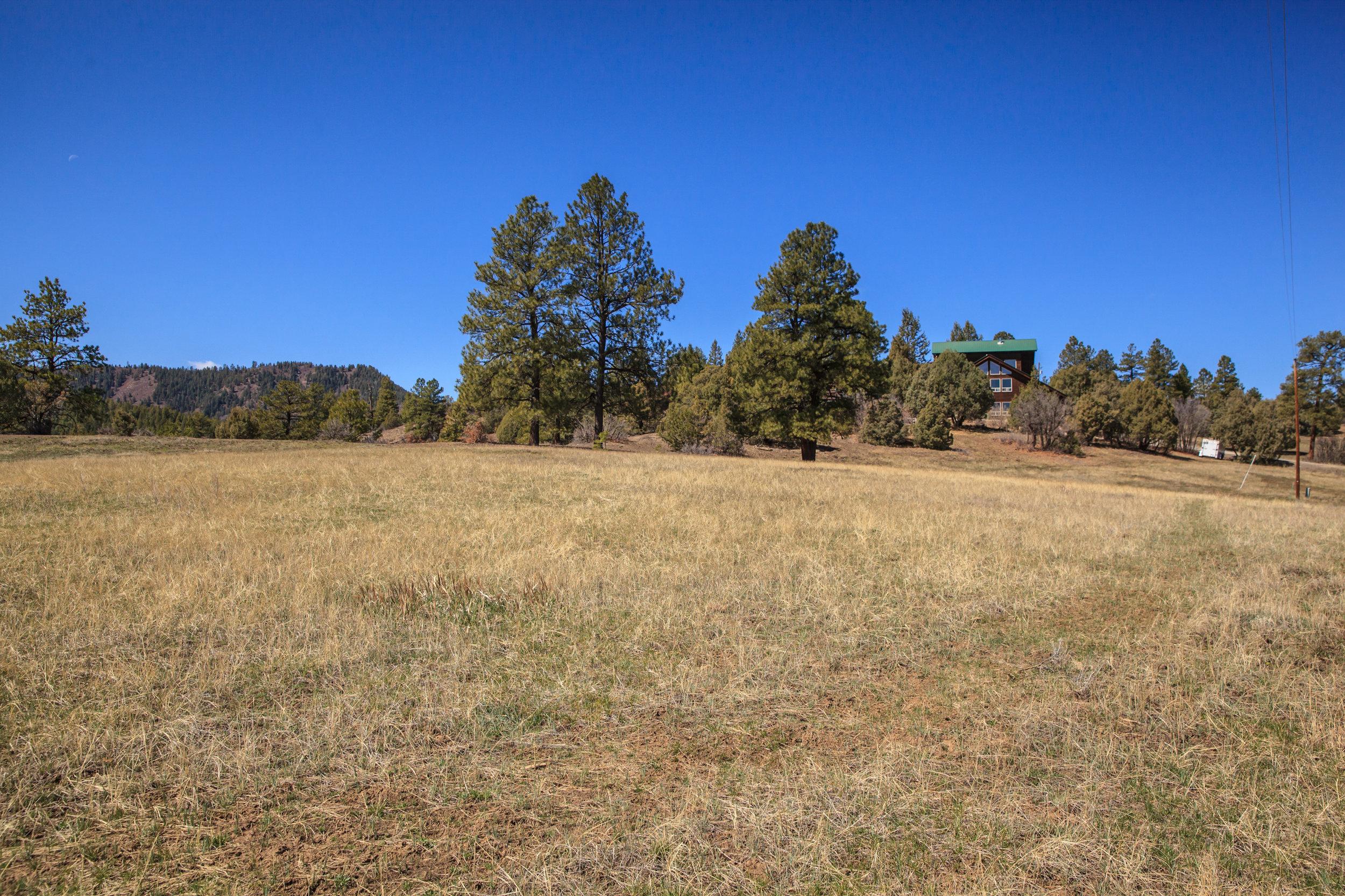 EXT Meadows CREN--2.jpg