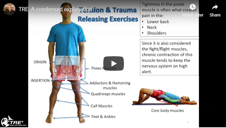 2018-12-13 14_03_29-What is TRE® _ Tension, Stress and Trauma Release _ TRE®screenshot.png