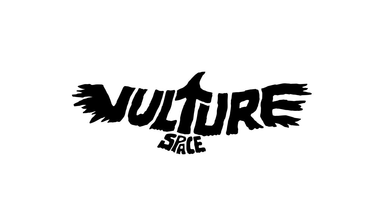 vulture_space_1.jpg