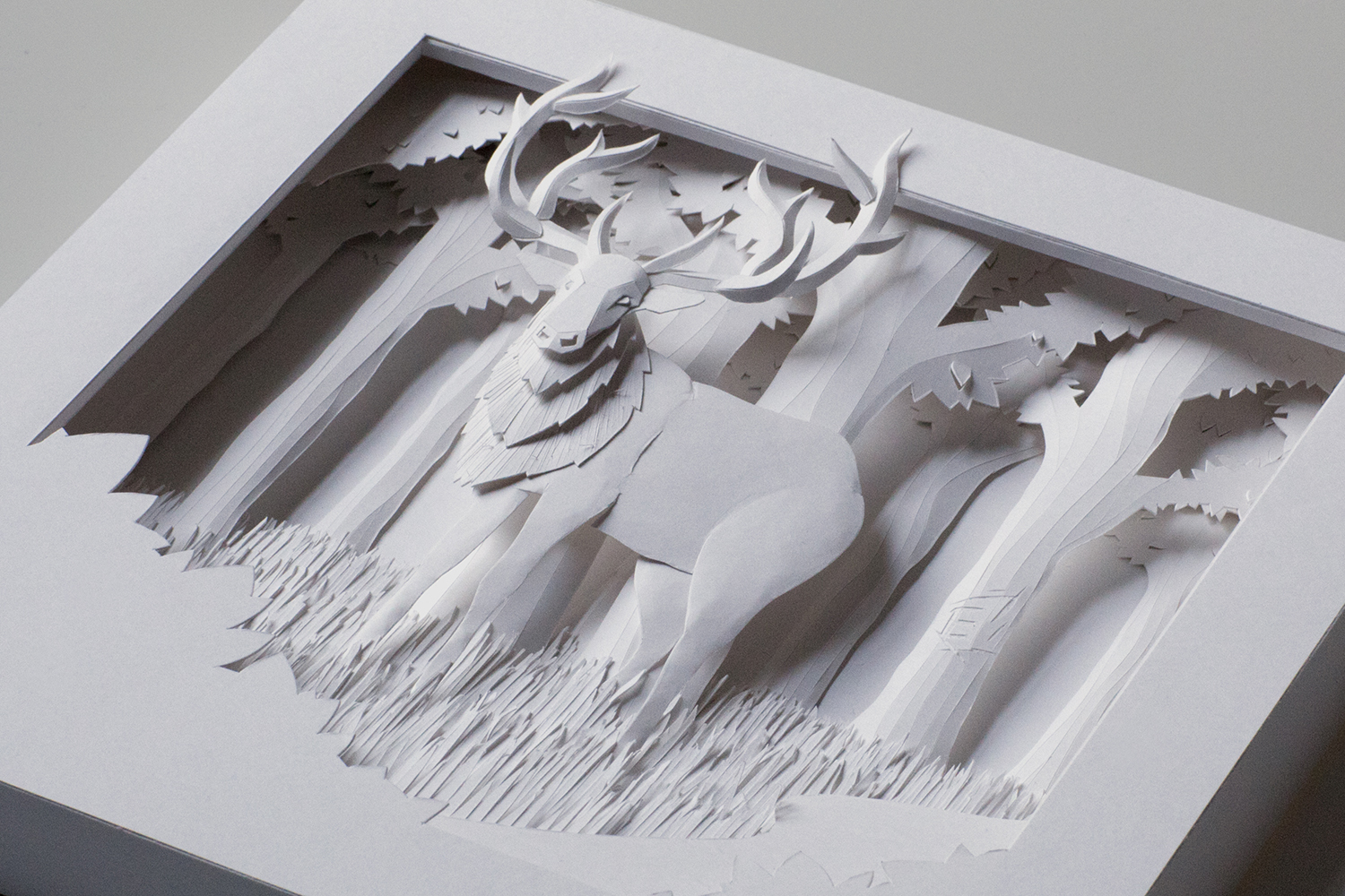 PaperSculpture_02.jpg