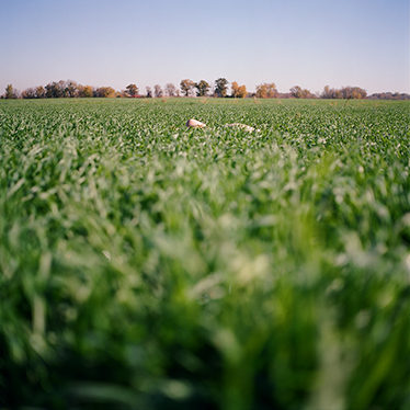 groundworks012.jpg