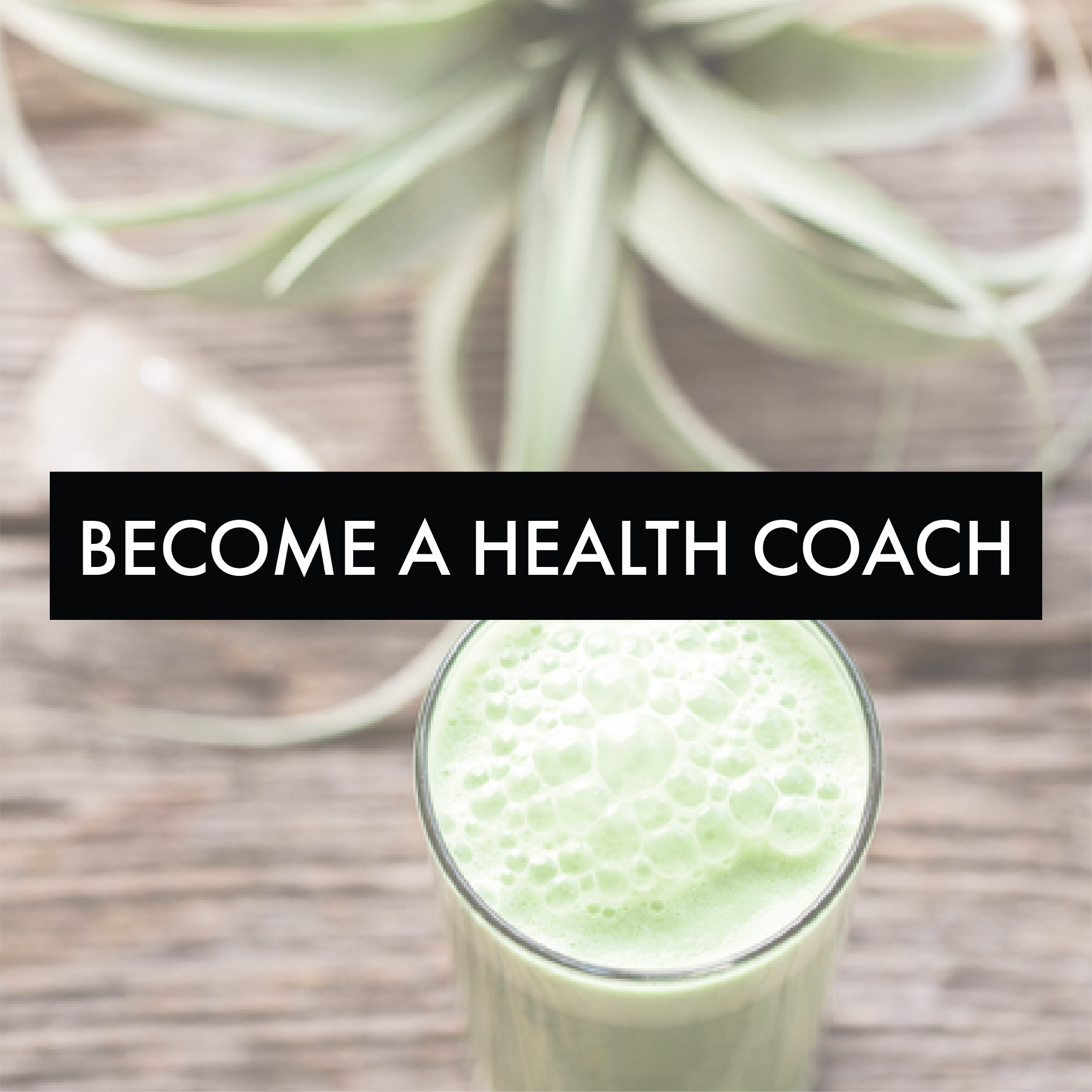 BECOME A CERTIFIED INTEGRATIVE NUTRITION HEALTH COACH