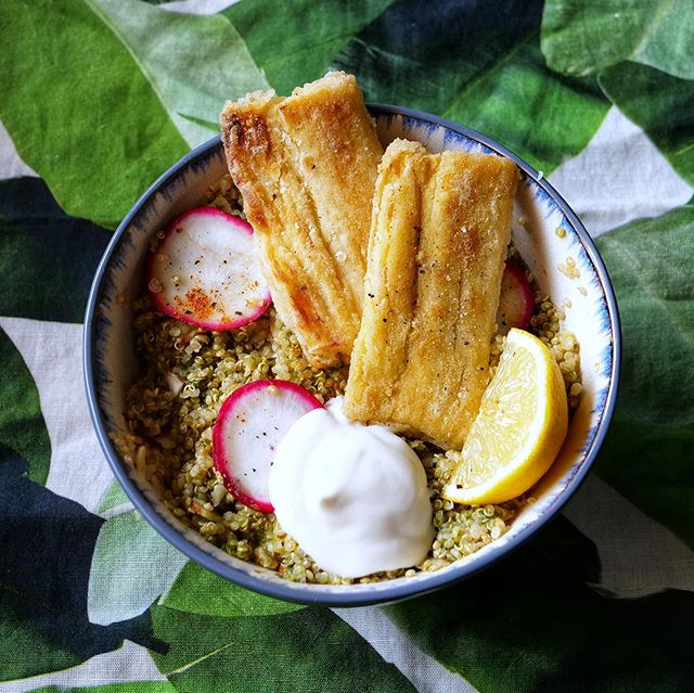 Wanna know a secret? 🤫 This Baja Fish Bowl actually has ZERO fish! 🐟🥙 #ad  The swap-out? Heart of palm! You may be surprised, but heart of palm (when cooked and seasoned right) has a super satisfying texture and great flavor! Paired with Cilantro Chutney Quinoa and a dairy-free Citrus Aioli, this dish was absolute plant-based perfection.  This week I made more of an effort to create plant-focused meals, thanks to @purplecarrotxo! All of their meals are 100% plant-based! #EatMorePlants The recipes were so easy to follow and were creative, colorful, and delicious. 🌈  Wanna to give 'em a try? 💜🥕📦 Follow the link in my bio, and use coupon code STRUHS to get $30 off your first order!