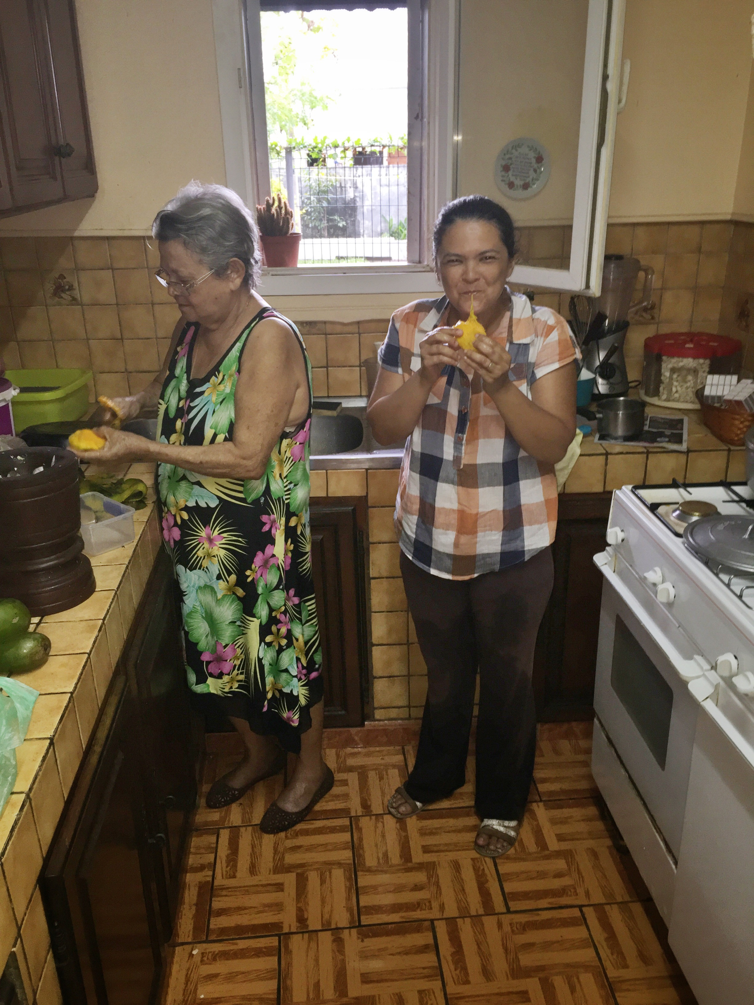 Tasting the green mangos to see if they can be used for the meal!