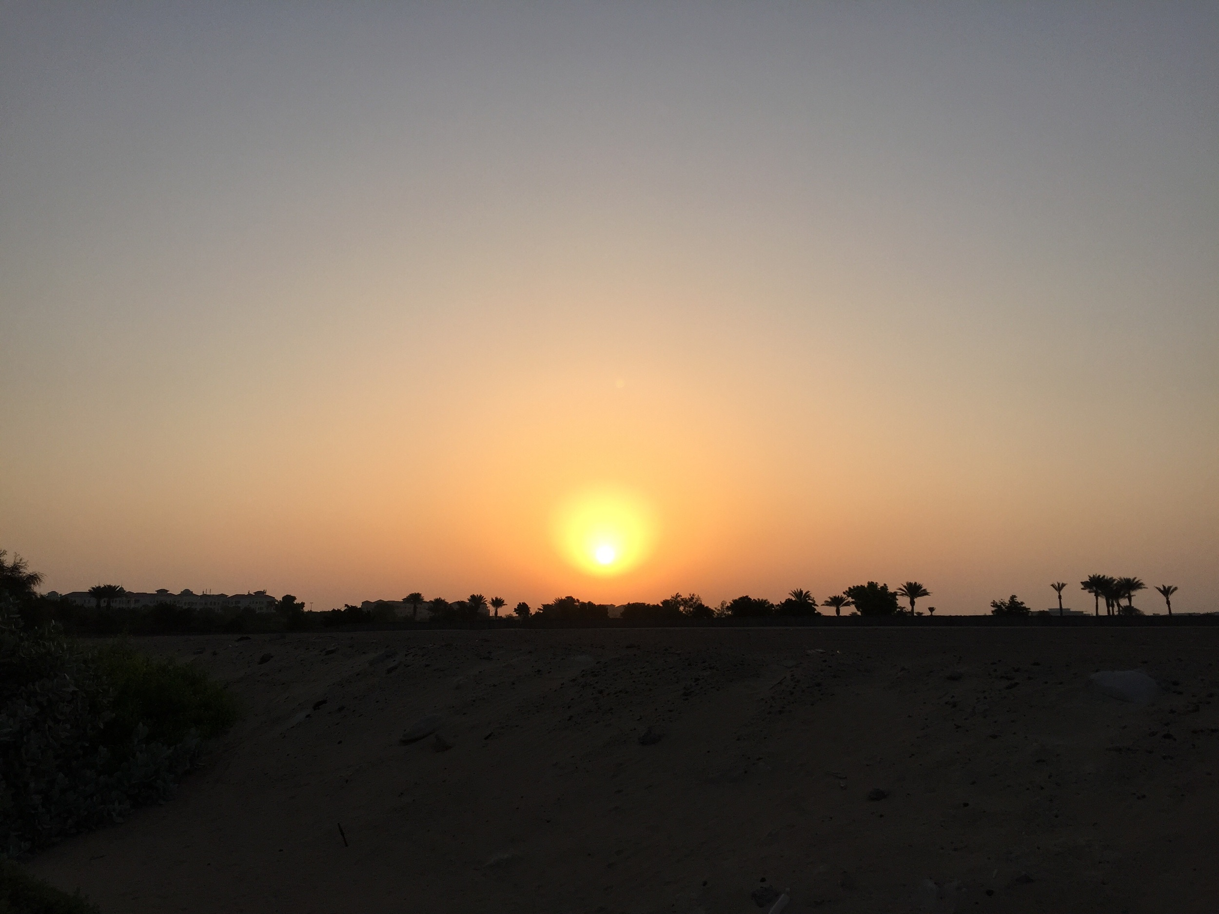 Al Badia Sunrise