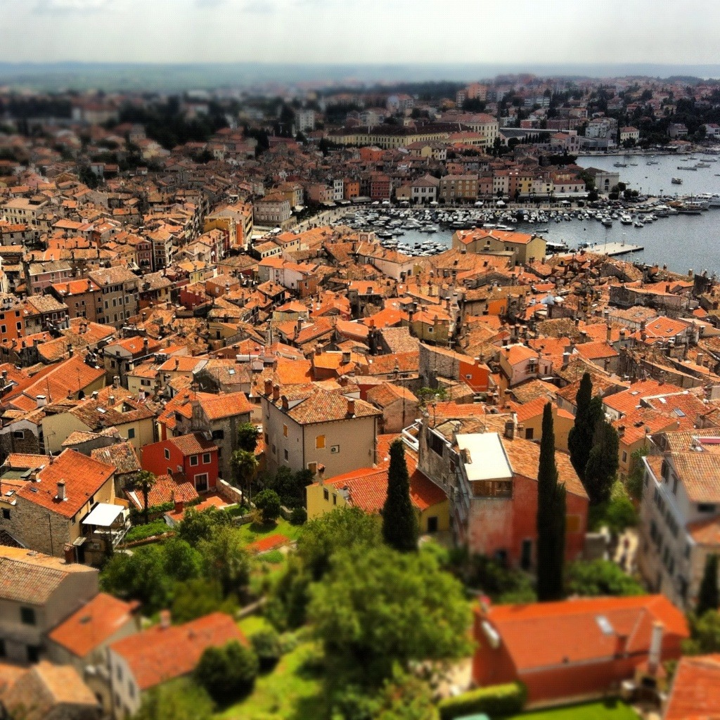 Rovinj from above