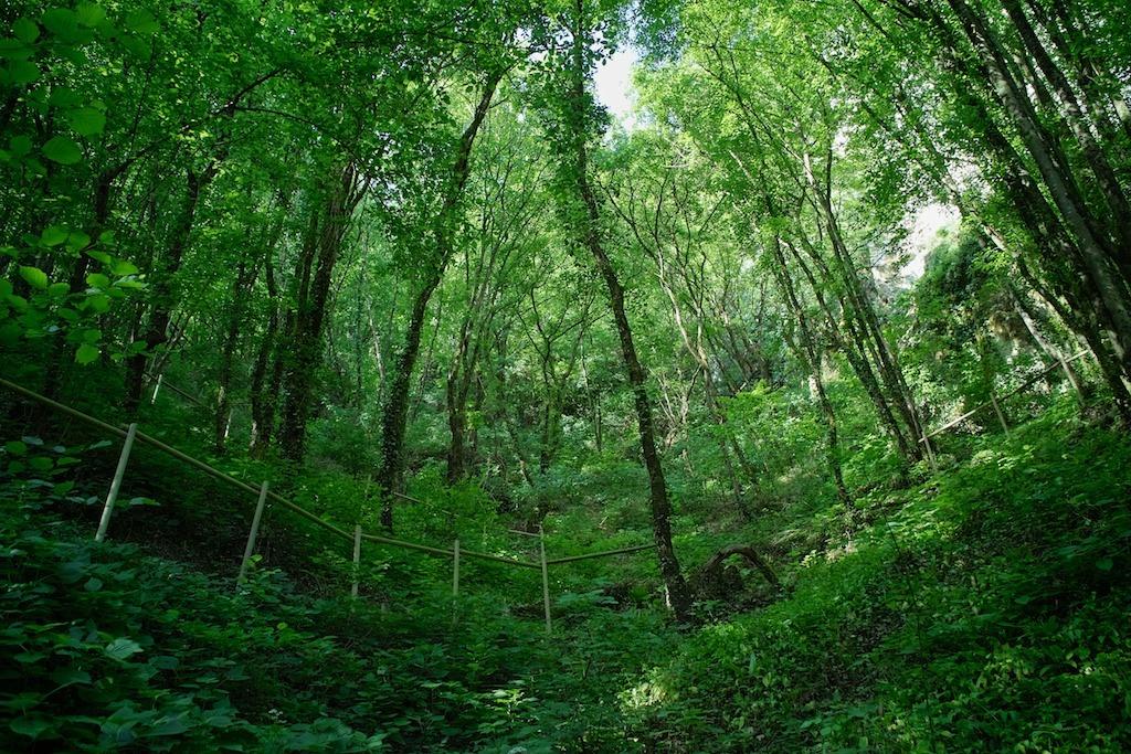 Pazin valley trail