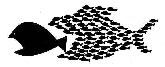 20130626-big-fish-little-fish.jpg