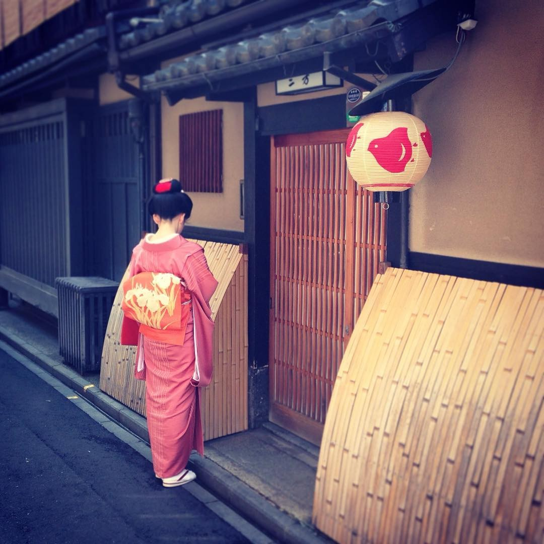 geisha maiko kyoto pontocho gion.jpg