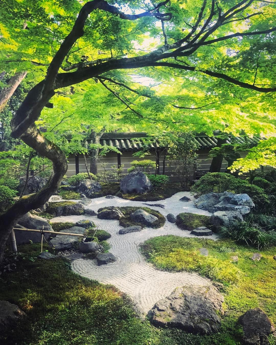 eikando garden kyoto kyotours