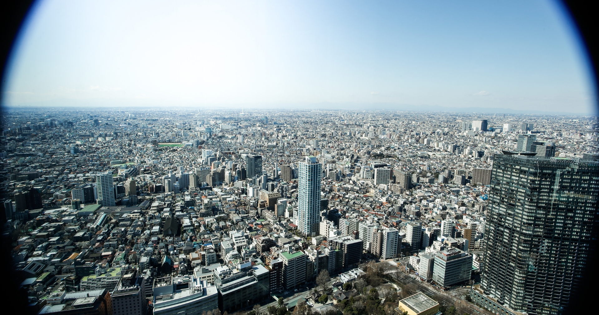 TOKYO REVERSE  5.jpg