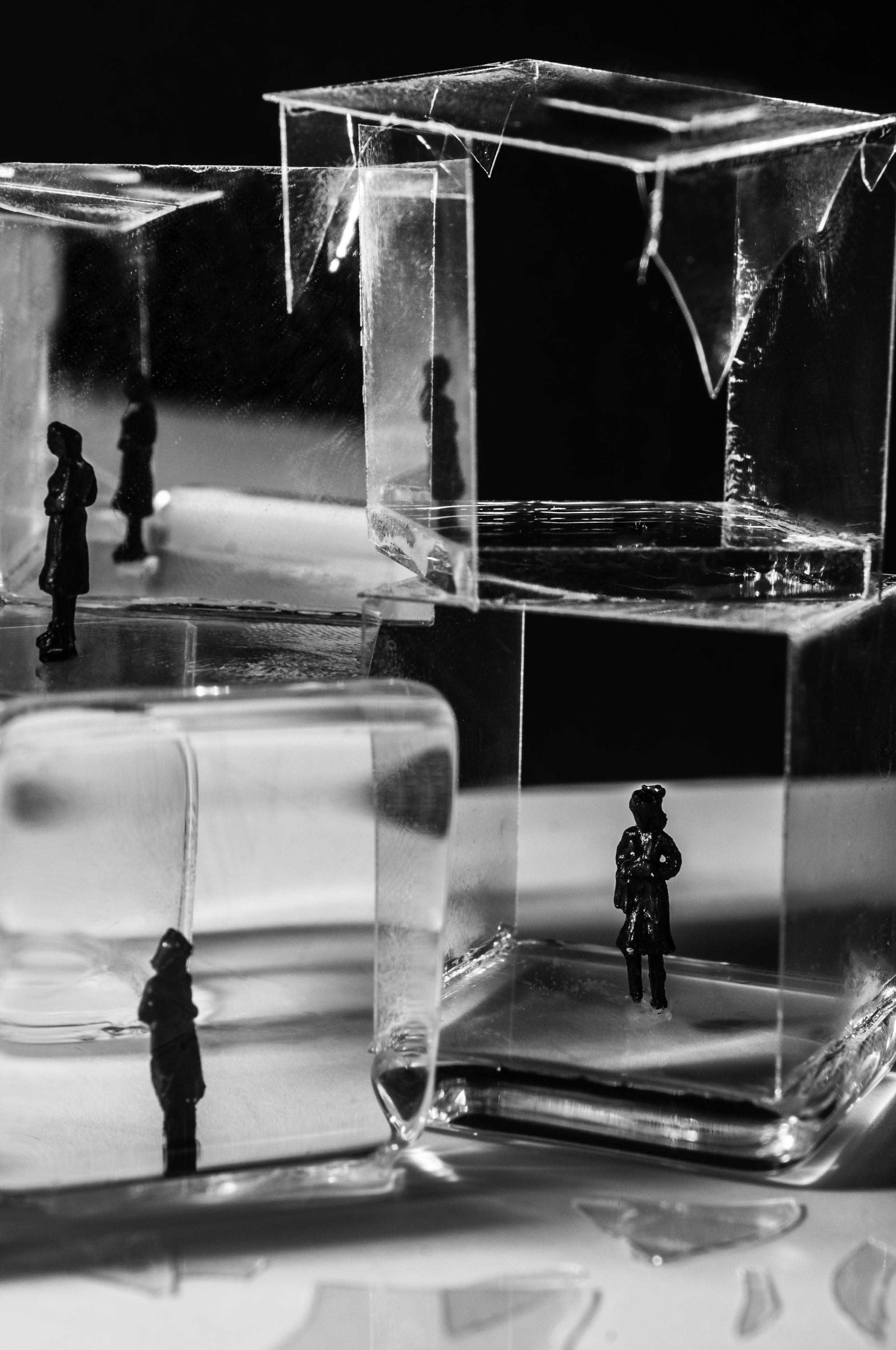 GlassHouses2_2.jpg
