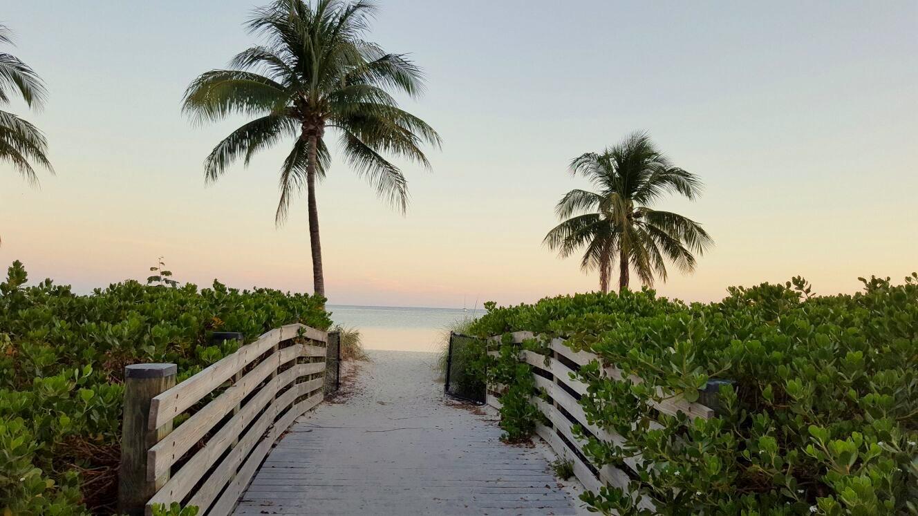Private beach:Turtle beach