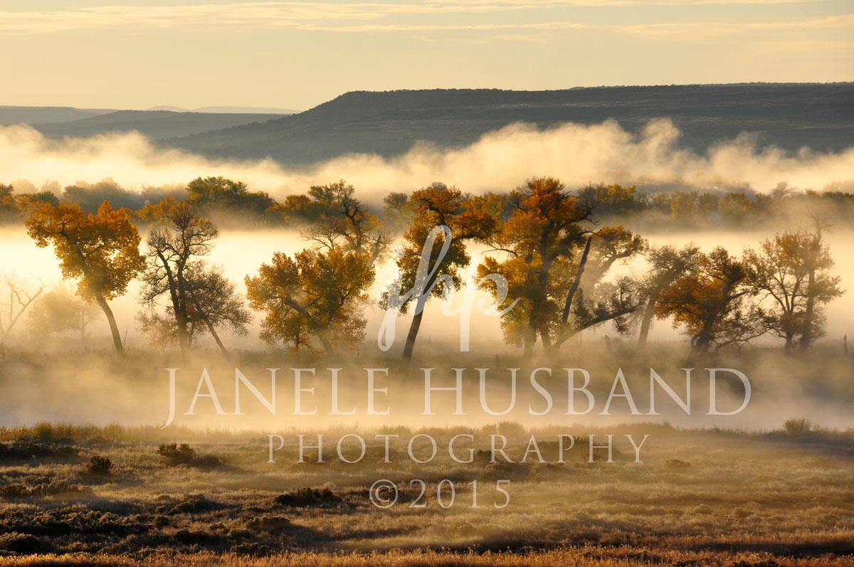 View-from-Horseshoe-Bottom-Overlook---Brns-Prk-Natl-Wldlf-Rfg-DSC_4712.jpg