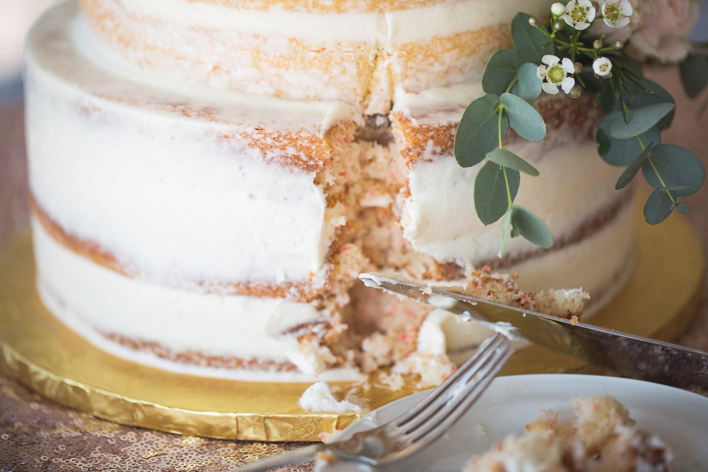 Michigan-Wedding-Photographer-Light-Garden-Photography-85.jpg