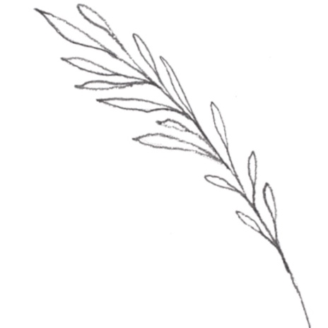Madison-leaf.jpg
