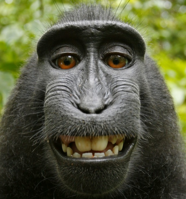 Controversial Naruto selfie image