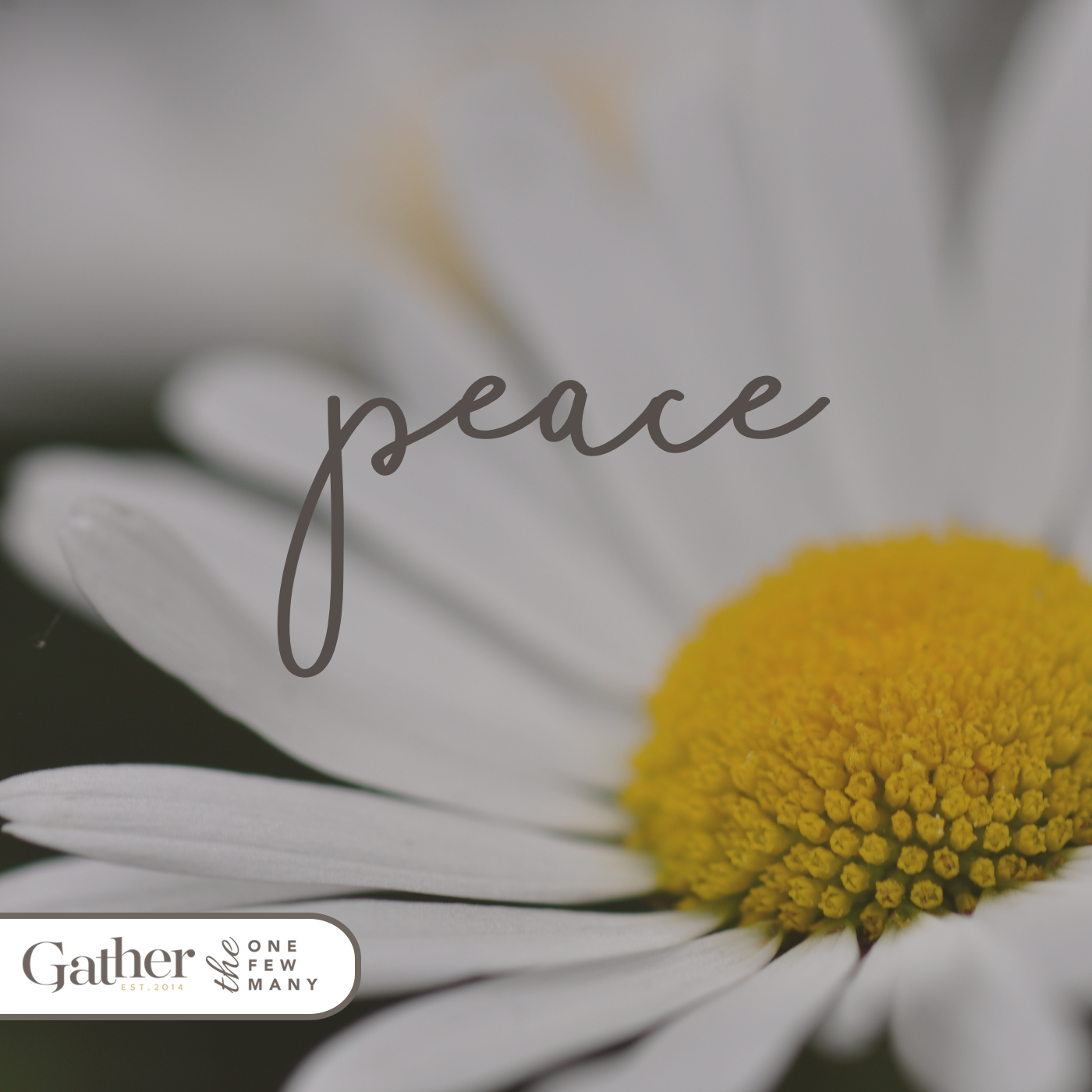 We can always ask Jesus who is the Prince of Peace (Isaiah 9:6