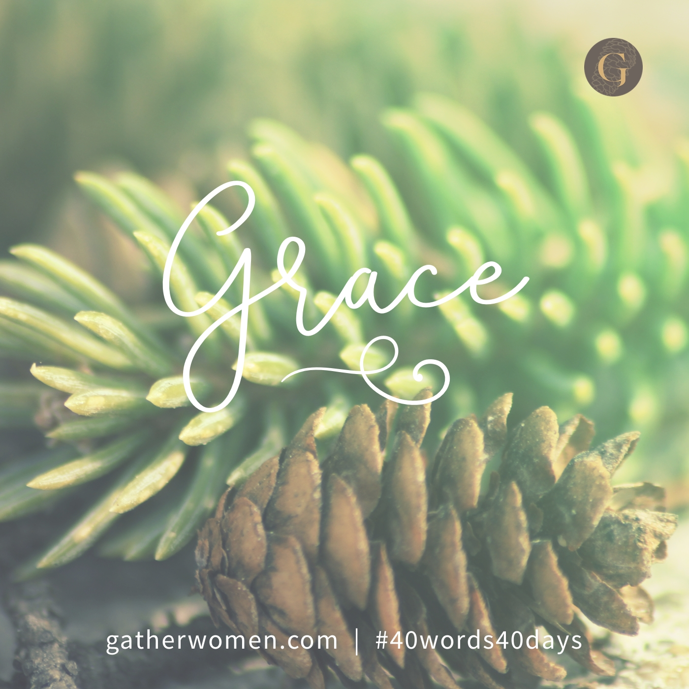 From his fullness we have all received, grace upon grace. John 1:1
