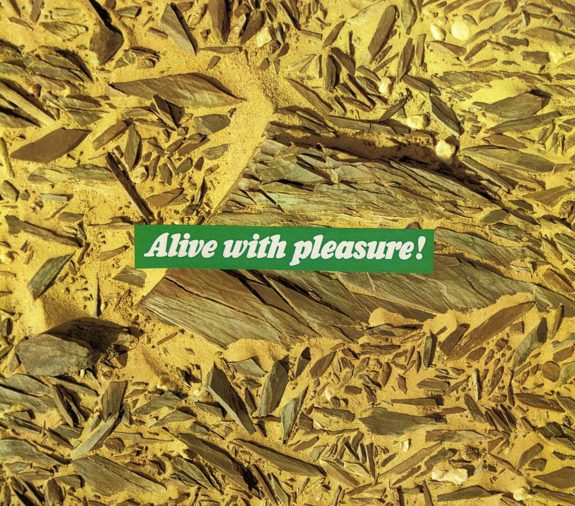 Alive With Pleasure, 2013.jpg