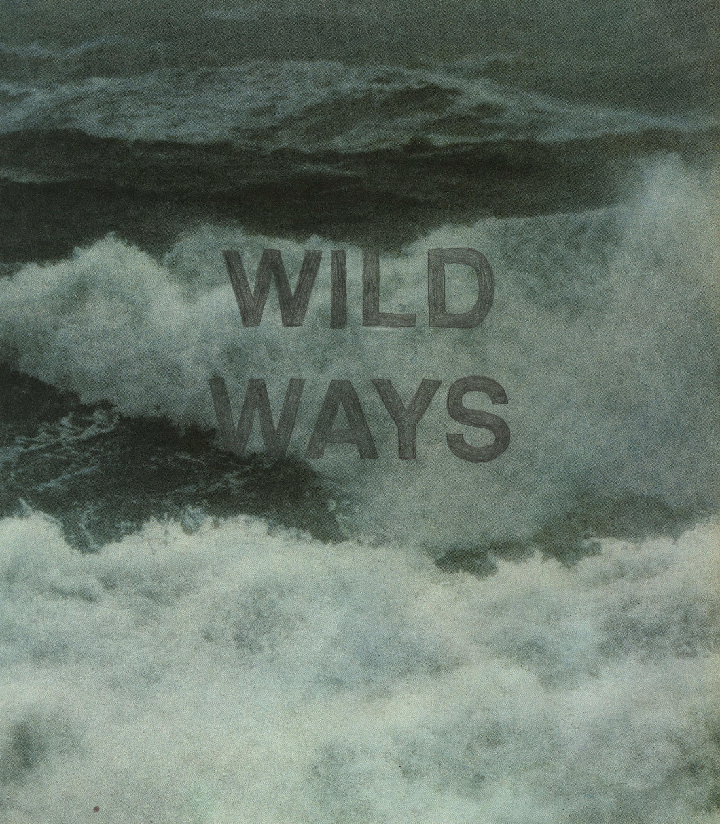 Wild Ways, 2013.jpg