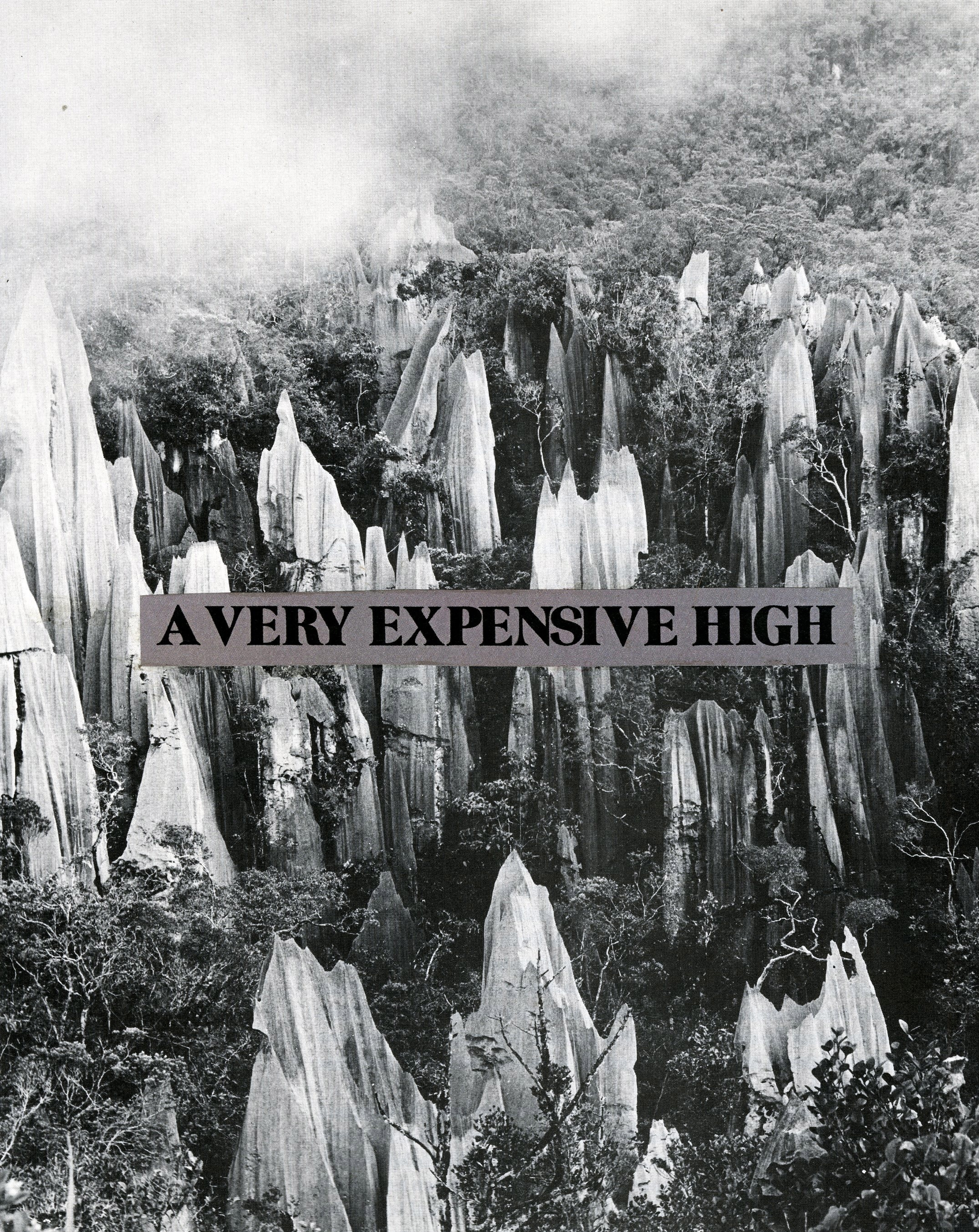 Very Expensive High, 2013.jpg
