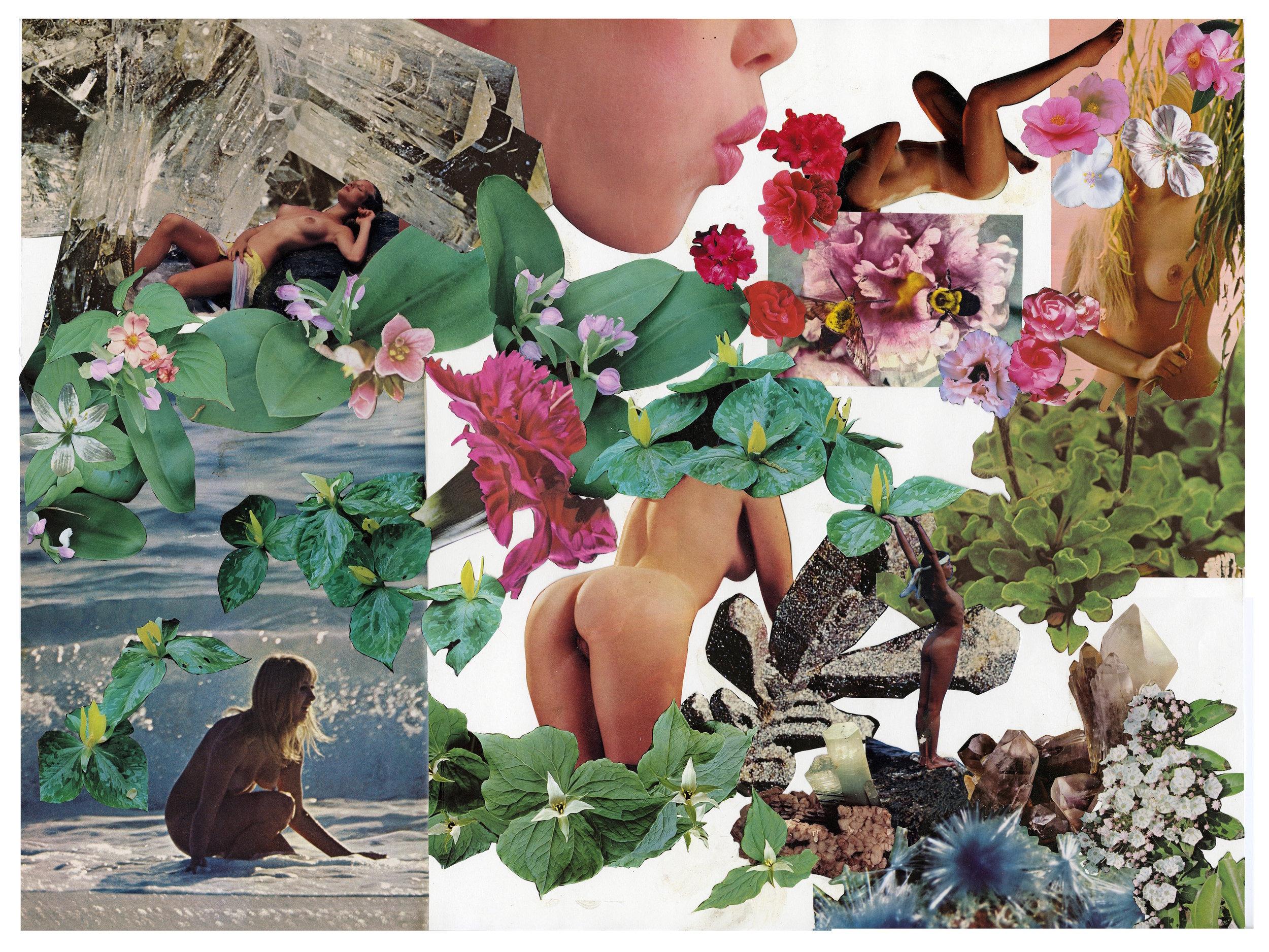 Big Collage 3.jpg