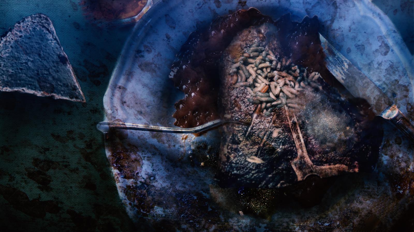 foodplatev02.jpg