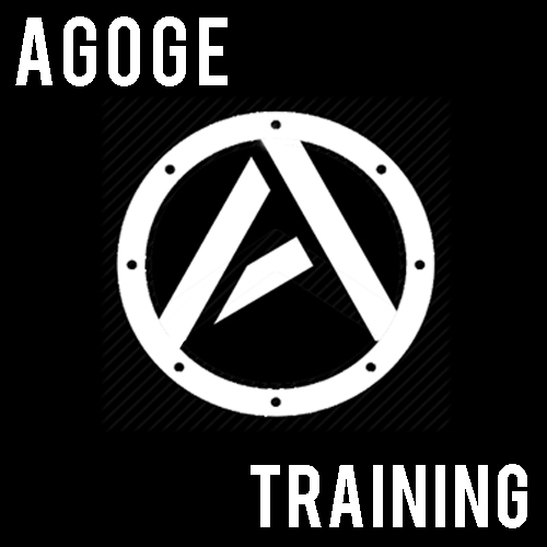 Daily Agoge Training - Fitness is such an important part of our daily routine and it has such a powerful impact on overall human performance in life. So often we can get stuck. As soon as we start training and getting healthier, stresses fall away and things become more clear.Our mission is to help people get back on their feet to live a happy, healthier, more successful lives not just for today and next month but for a lifetime.