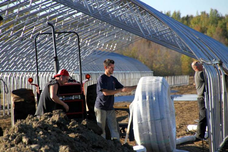 construction-greenhouses.jpg